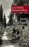 Les Sentes buissonnières (roman)