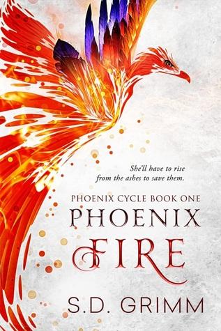 Phoenix Fire (Phoenix Cycle #1) by S D  Grimm
