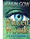 Silver (Wicked Woods, #3)