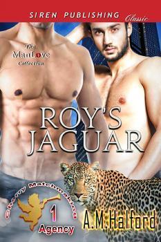 Roy's Jaguar by A.M. Halford