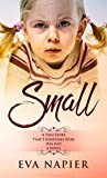 Small: A true story that I sometimes wish was just a novel