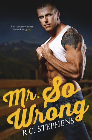 Mr. So Wrong (Mister, #2)