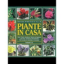 Guida pratica alle piante in casa Ken March
