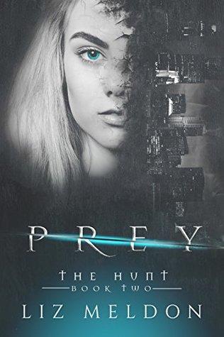 Prey (The Hunt Book 2)