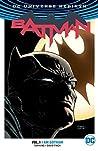 Batman, Vol. 1: I...