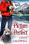 Picture Perfect (River's End Ranch, #45)