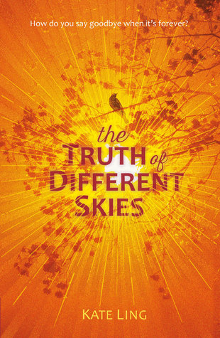 The Truth of Different Skies