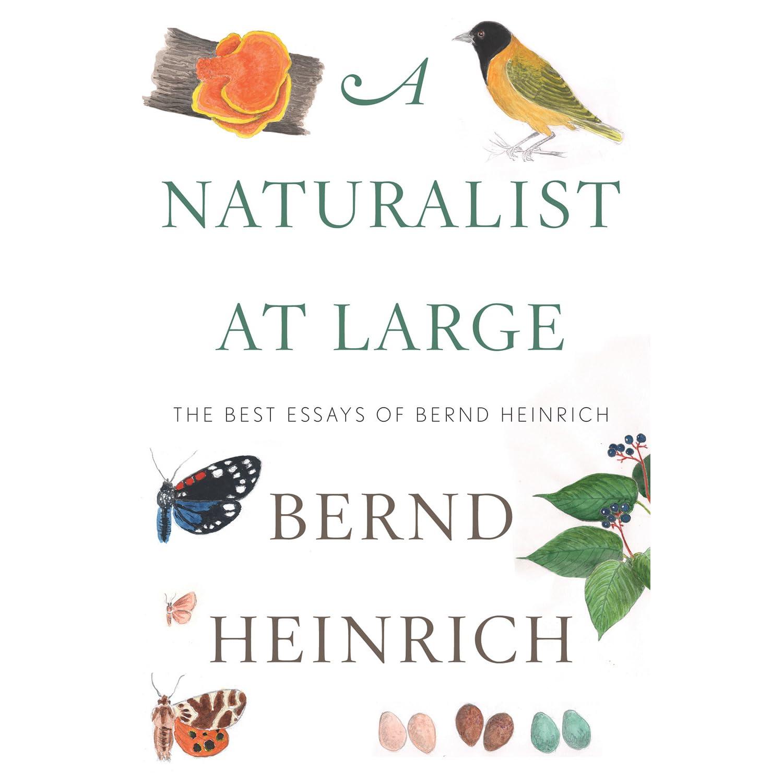 A Naturalist at Large: The Best Essays of Bernd Heinrich by Bernd