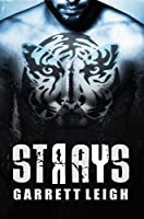 Strays (Urban Soul #2)