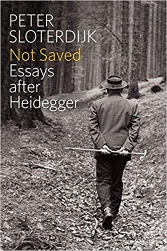 Not Saved Essays After Heidegger
