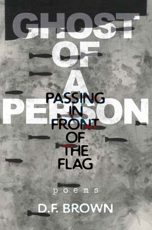 Ghost of a Person Passing in Front of the Flag: Poems