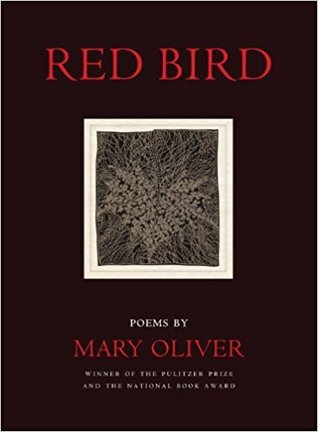 Red Bird by Mary Oliver