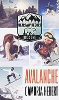 Avalanche (BearPaw Resort, #1)