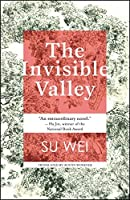 The Invisible Valley: a novel