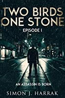 An Assassin Is Born (Two Birds One Stone #1)