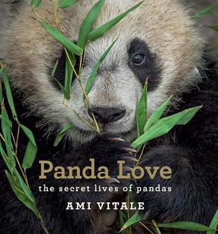 Panda Love: Behind the Scenes at a Panda Sanctuary