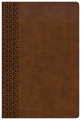 KJV Everyday Study Bible, British Tan LeatherTouch