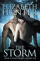 The Storm (Irin Chronicles, #6)