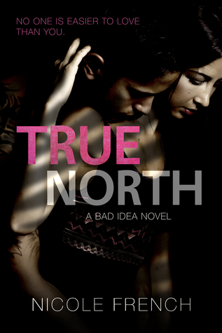 True North (Bad Idea Book 3)