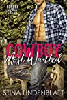 Cowboy Most Wanted (Copper Creek, #1)