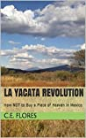 La Yacata Revolution: How NOT to Buy a Piece of Heaven in Mexico