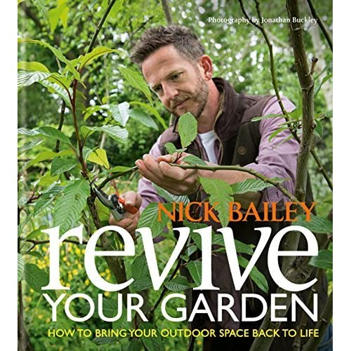 Revive Your Garden How to bring your outdoor space back to life