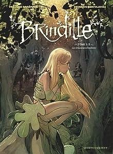 Les chasseurs d'ombres (Brindille, #1)