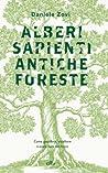 Alberi sapienti, antiche foreste. Come guardare, ascoltare e avere cura del bosco