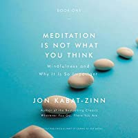 Meditation Is Not What You Think (Book #1): Mindfulness and Why It Is So Important