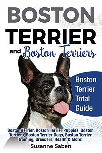 Boston Terrier and Boston Terriers Boston Terrier Total Guide Boston Terrier, Boston Terrier Puppies, Boston Terriers