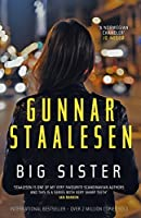 Big Sister (Varg Veum Series)