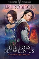 The Foes Between Us (The Last Wizard series, #1)
