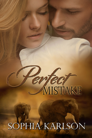 Perfect Mistake (Perfect, #1)