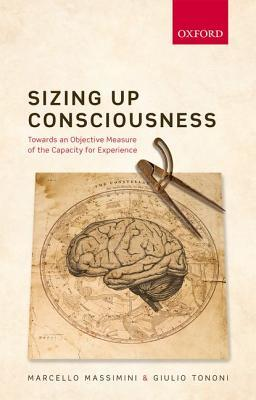 Sizing Up Consciousness: Towards an Objective Measure of the Capacity for Experience
