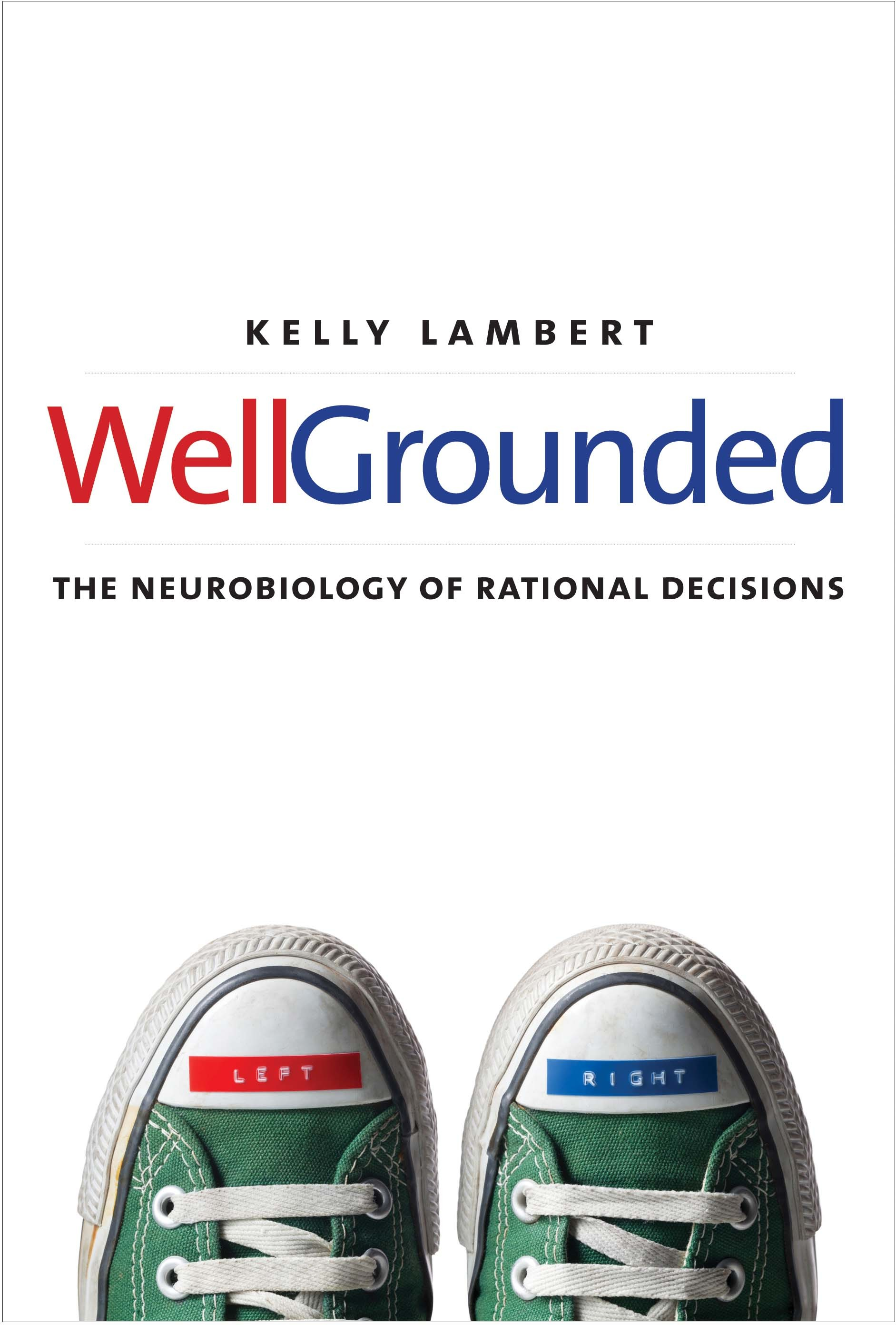 Well-Grounded- The Neurobiology of taking decisions