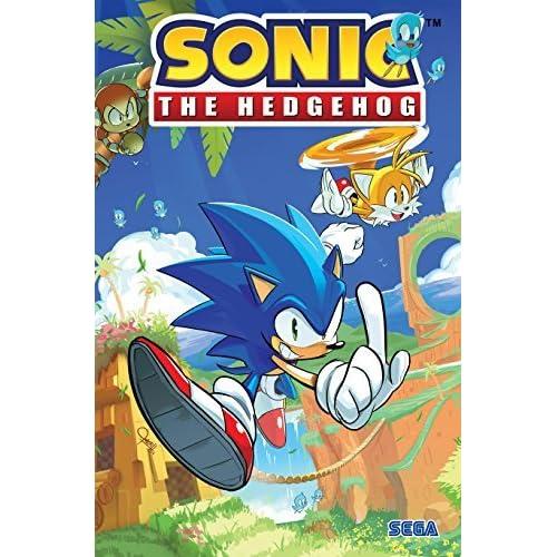 Sonic The Hedgehog Vol 1 Fallout By Ian Flynn
