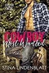 Cowboy Most Wanted (Copper Creek, #1)