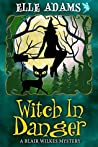 Witch in Danger (Blair Wilkes Mystery #3)