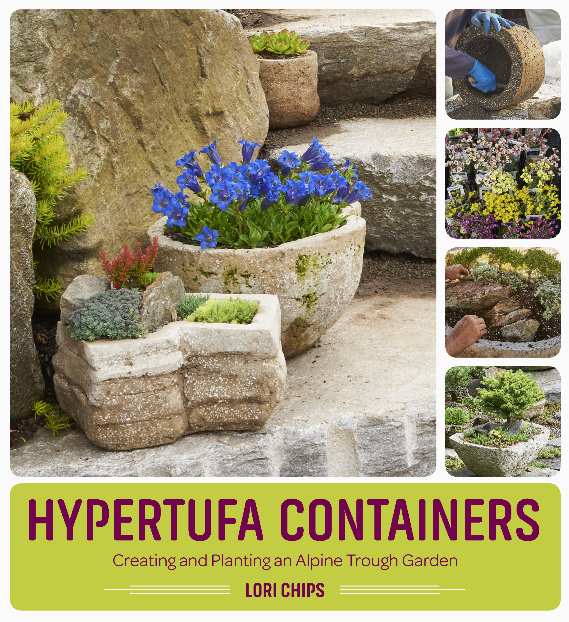 Hypertufa Containers Creating and Planting an Alpine Trough Garden