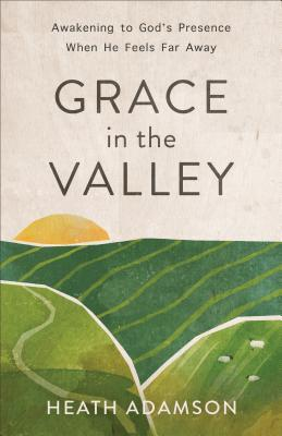 Grace in the Valley: Awakening to God's Presence When He Feels Far Away