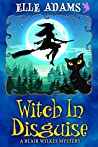 Witch in Disguise (Blair Wilkes Mystery #4)