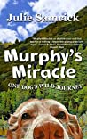 Murphy's Miracle: One Dog's Wild Journey