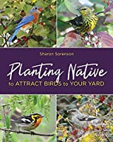 Planting Native to Attract Birds to Your Yard