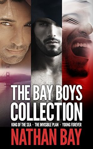 The Bay Boys Collection: A Gay Mystery Series