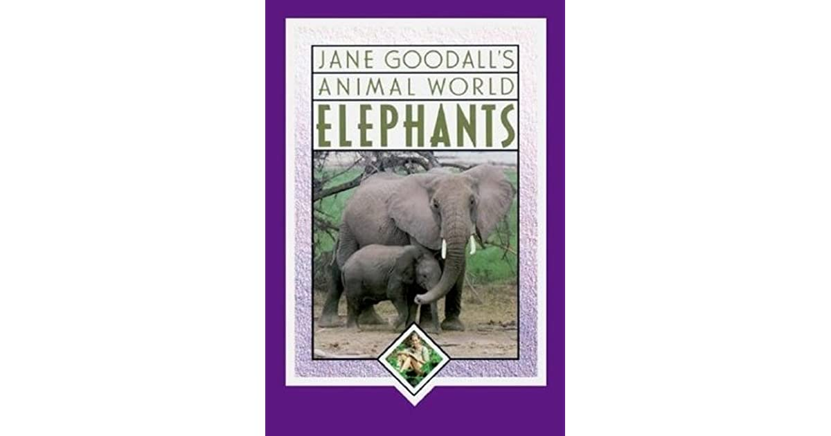 Jane Goodalls Animal World Elephants