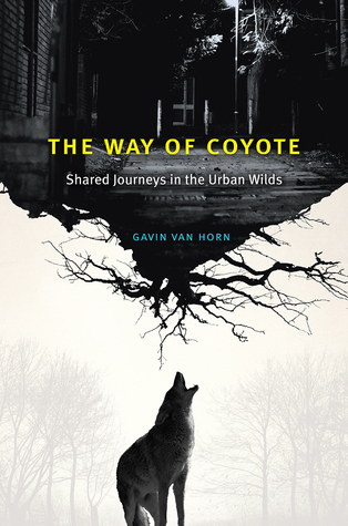 The Way of Coyote by Gavin van Horn