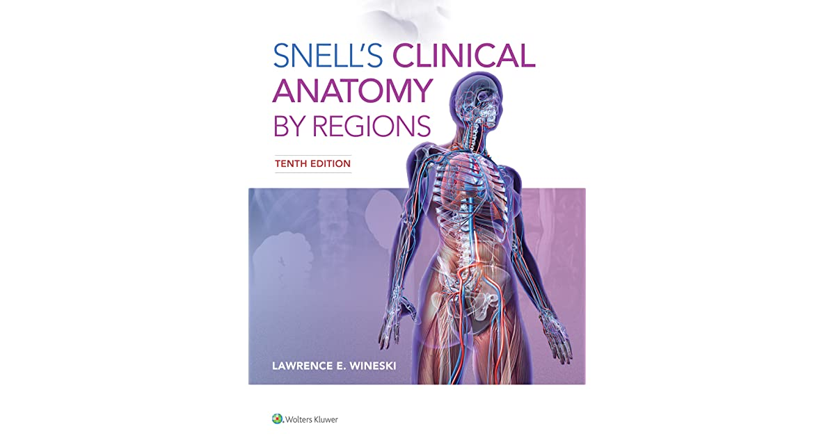 Snells Clinical Anatomy By Regions By Lawrence Wineski