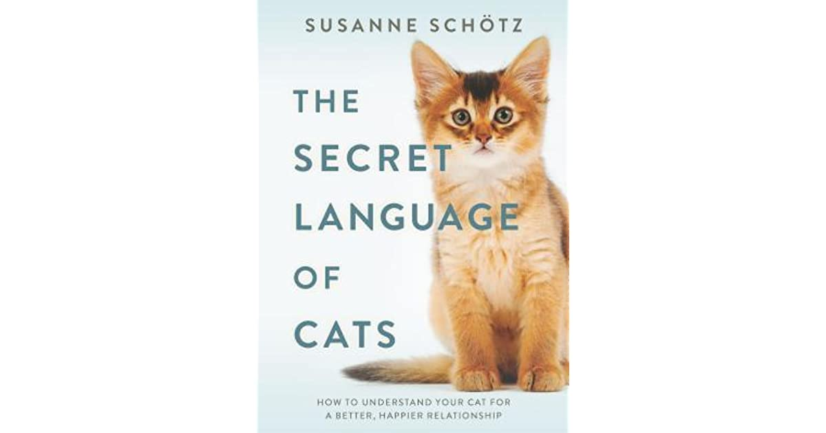 The Secret Language of Cats: How to Understand Your Cat for