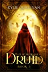 Druid (Tales of Silver Downs, #3)