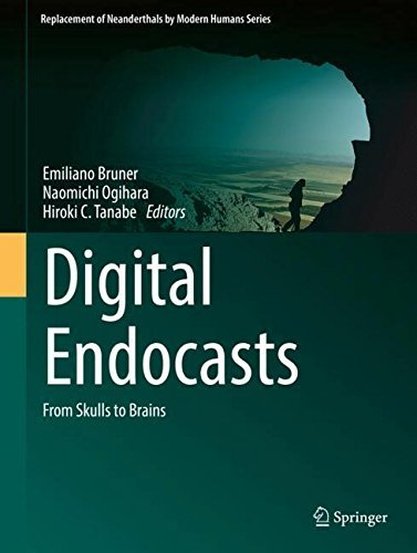Digital Endocasts From Skulls to Brains